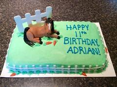 Horse cake by Whitney, Linn County, IA, www.birthdaycakes4free.com