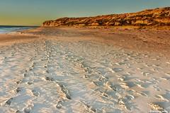 White sand beach (Sougata2013) Tags: beach landscape nikon australia adelaide whitesand southaustralia seabeach portwilunga aldingabay nikond7200