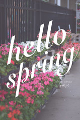 Hello Spring 2016 (Amani Alhjaji) Tags: life flowers roses plants beauty weather gardens season living back spring nice break
