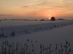 Sneeuw (ginadelangefotoos) Tags: winter avond koud
