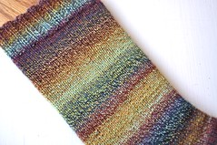 nfs f mag socks leg (thing4string) Tags: wool socks knitting sock spin knit handknit yarn spinning fingering handspun falkland handknitting handspinning 3ply nestfiberstudio
