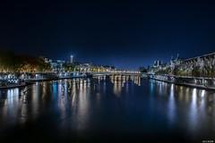 Pont du Carrousel (the_wonderer_wanderer) Tags: bridge paris france tower seine architecture cityscape tour nightscape louvre eiffel