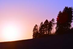 Sunset // Sonnenuntergang (WODKA & CAMERAS) Tags: blue sunset red sky orange sun tree rot nature silhouette yellow germany landscape deutschland sonnenuntergang outdoor hiking hill natur himmel gelb blau landschaft sonne baum wandern draussen hgel