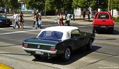 Ford Mustang - Santiago, Chile (RiveraNotario) Tags: chile santiago cars ford autos fordmustang carspotting