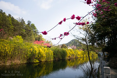 MuLan TianChi lake (hippo350) Tags: travel nature garden historic wuhan mulantianchi