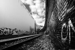Abandoned industry (Erik Schepers) Tags: white black abandoned industry germany industrial railway dusseldorf hafen buidings deuchland