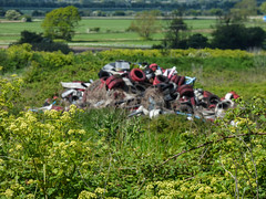 The Red Blot on the Landscape (Steve Taylor (Photography)) Tags: uk greatbritain red england white green trash weeds unitedkingdom dump rubber hedge rubbish gb flytipping tyres ramsgate thanet ebbsfleet