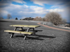 A beautiful day in the field (Geir Bakken) Tags: art strange beautiful norway bench landscape norge nice olympus unreal omd artisitc niceview horten vestfold m43 yabbadabbadoo em5 on1photo