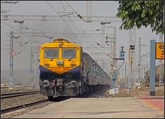 JHS WDG-4D (Abhishek Jog) Tags: sf from junction faced jb express through dual towards charging suw bvb jhs bhopal bpl mps blasting 70310 emd jhansi ravenous pratapgarh 12184 nsz nishatpura wdp4d sukhisewaniyan bhadbhadaghat bhopaljn pratapgarhbhopal pbhbpl