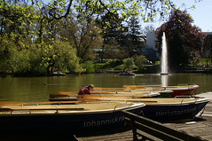Palmengarten, Bootsverleih am groen Weiher - Boat rental at the big pond (HEN-Magonza) Tags: germany deutschland pond hessen frankfurt palmengarten boatrental hesse weiher bootsverleih