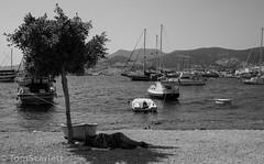 DSC_1154.jpg (cptscarlett78) Tags: nikon scarlett sea nikon castle tom turkey harbour aegean kalesi d7100 d7100 bodrum bodrum