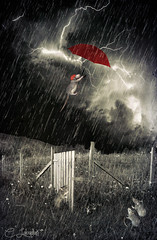 FlyAwayByeBye (clabudak) Tags: red storm rain animal umbrella fence mouse rodent blackwhite rat outdoor meadow surreal ii lightning netart