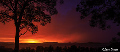 0S1A5741 (Steve Daggar) Tags: storm silhouette sunrise gosford