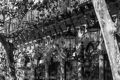 Barcellona 25.10 - 02.11.2014 - WEB - 007 (Albycocco80) Tags: barcelona catalunya sitges barcellona catalogna barcelona2014 barcellona2014 albycocco80 albertovoarino albertovoarino2014 albertovoarinophotos2014 albycocco802014 albycocco80photos2014