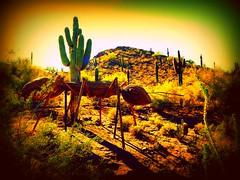 nukleer THEM (milomingo) Tags: light shadow arizona cactus southwest art texture phoenix contrast bug insect landscape dawn saturated desert bright outdoor dusk ant hill grain vivid them organic saguaro multicolored sonoran photoart arid bold desertbotanicalgarden organicsculpture photoborder