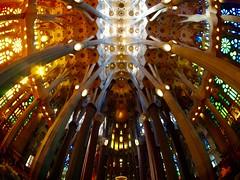Sagrada Familia (Guidoneee) Tags: barcelona travel espaa color church familia architecture colorfull basilica bcn iglesia olympus colores famlia fisheye gaud catalunya vault sagrada modernismo antoni barcellona volta modernisme catal bveda cataln mft samyang