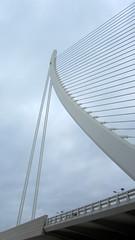Pont de l'Assut de l'Or, Valencia (David Jones) Tags: bridge valencia cityofartsandsciences pontdelassutdelor