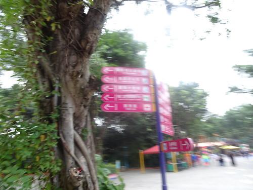 Chimelong Paradise / 长隆欢乐世界