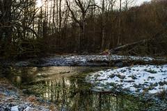 Ruscello innevato (DarioMarulli) Tags: winter snow nature water nikon stream natura neve acqua abruzzo laquila torrente campotosto d3200 mascioni nikonclubit