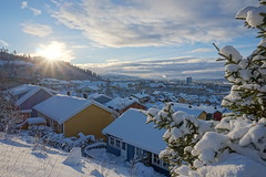 Winter in Trondheim (serhii.lozovyi) Tags: winter sun snow mountains pinetree landscape trondheim colorfulhouses