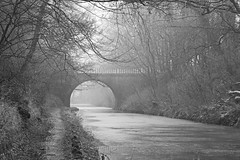 winter on the towpath (ally bally bee) Tags: bridge trees winter blackandwhite snow cold ice nature water contrast landscape canal arch shadows seasons mud stonework dirty cutting manmade railings towpath winterlight zoomlens unioncanal civilengineering cliftonbridge tamronlens sonyalpha sonycameras sonyphotographing sonya77 cliftoncutting tamron2470f28divcusdsp