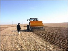 CA Planter Mar (ICARDA-Science for Better Livelihoods in Dry Areas) Tags: farmers northafrica climatechange mena pulses ifad nutrition resilience drylands icarda incomes westasia croprotation seedsystems conservationagriculture euifad wheatlegumecroppingsystems