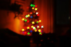 Starry Christmas (matteo.vannacci) Tags: christmas xmas stella light tree lights star christmastree albero natale xmastree