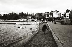 weaterfront (matthewheptinstall) Tags: uk england girl lakes lakedistrict niece littlegirl windemere