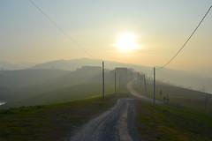 Sentiero (andrea sighinolfi) Tags: sunset tramonto hills modena nebbia paesaggio castelvetro colline collina foschia sancesario