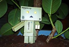 Jungleland (Spookyfilm) Tags: jungle figure figur jungleland revoltech dschungelcamp