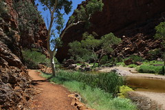 Simpsons Gap, West MacDonnell Ranges (cathm2) Tags: travel trees colour walking landscape scenery nt walk australia outback northernterritory simpsonsgap alicesprings redcentre westmacdonnell