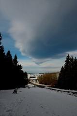 Rotorwolke (Deutscher Wetterdienst (DWD)) Tags: schnee trees cloud snow wolke bume weg dwd wetterdienst rotorwolke