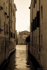 Discovering Venice 2016 (Eleonora Cacciari) Tags: italy monocromo canal italia laguna acqua venezia efs canale scorcio elegante mistero serenissima canali misteriosa affascinante repubblicadisanmarco eos1200d canoneos1200d eleonoracacciari discoveringvenice2016 scorciodellasplendidavenezia isegretidivenezia