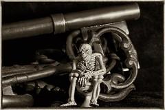 Skeleton Keys (Evoljo) Tags: door metal keys skeleton blackwhite nikon open lock bones 365 366 d7100