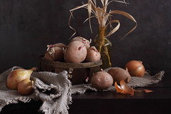 Craving For Spring (panga_ua) Tags: stilllife art grass composition canon spectacular spring potatoes artwork artistic availablelight ukraine poetic creation imagination natalie presentation onion arrangement tabletop burlap bodegon naturemorte panga artisticphotography rivne naturamorta glassbottle artphotography sharpfocus paintedbackground woodentabletop  nataliepanga cravingforspring