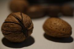 Nuts (Pascal Volk) Tags: food macro 50mm almond makro mandel walnuss valnt juglans canonef50mmf25compactmacro valnd persianwalnut baumnuss canoneos6d macrodreams welschnuss