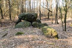 """Grosteingrab """"Der hohen Stein"""" (sillie_R) Tags: germany deutschland oldenburg niedersachsen hohen steingravegrossteingrabmegalithicmegalithic graveslindern derhohenstein"""