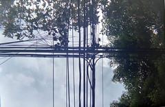Canonet QL GIII + proplus II (plazabreakers) Tags: street color film méxico 35mm canon de calle df fuji iso vida 200 pelicula 135 40mm canonet calles modo rollo c41 canonetql17giii f17 telemetrica ragefinder cdmx telemetro modosdevida proplusii