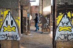 R.U.S.C.O. - Street Art a Bologna #4 (Gianni Trux) Tags: street art san photos bologna fotografia gianni fiera donato trux spazi rusco urbani trudu
