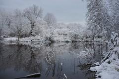 First day of spring, Long Island Sound, CT (Edwaste) Tags: milford connecticut silversandsstatepark walnutbeach snow morning milfordbeach ct
