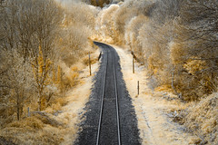 Railroad 2 (Trus29) Tags: road railroad train de ir brittany bretagne breizh rails infrared chemin fer quimper bzh infrarojo infrarouge