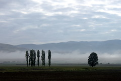 morning fog on the way to pamukkale (1) (kexi) Tags: morning trees sky mountains fog clouds canon turkey landscape may silhouettes layers paysage 2015 instantfave