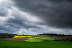Eclaircie (Thomas Vanderheyden) Tags: light sky cloud france tree nature colors field landscape lumire country ciel fujifilm nuage paysage campagne arbre couleur champ picardie xt1 thomasvanderheyden