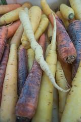 20160423 Provence, France 02593 (R H Kamen) Tags: food france closeup vegetable carrot variety multicolored freshness marketstall vaucluse foodmarket provencealpesctedazur rhkamen