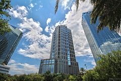 Tampa Downtown - Florida (Andrea Moscato) Tags: city blue light shadow sky usa white reflection building tree green glass leaves skyline clouds america skyscraper mirror us downtown nuvole day cityscape view unitedstates vivid cielo vista civiccenter citt statiuniti andreamoscato