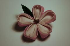 Singel Sakura Kanzashi (Cha Verde) Tags: flowers sakura blume blte stoff kanzashi