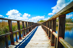 Wood bridge over a lake (carlos.compani) Tags: wood bridge lake relax puente madera footpath humedal daimiel