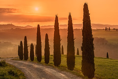 Another misty golden morning (Achim Thomae) Tags: italien landscape europa europe italia landschaft mrz frhling 2016 thomae achimthomae