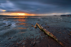 Light (erwin.delfin_photography) Tags: sunset clouds landscapes seascapes outdoor tide driftwood lowtide stormclouds ionabeach thickclouds