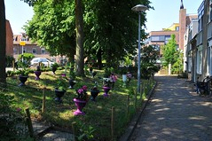 Zwartewater Utrecht (FaceMePLS) Tags: garden utrecht nederland thenetherlands streetphotography pot tuin bloemen tuintje bloempot straatfotografie potten facemepls nikond300 sierpot buurtuintje